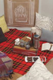 wintry indoor picnic