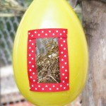 Super easy bird house favors