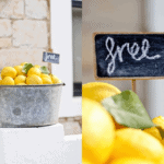 reason to celebrate | free lemons