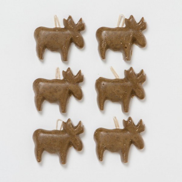 moose fire starters fall party decorations