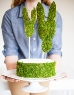 moss trim cake and bunny heads