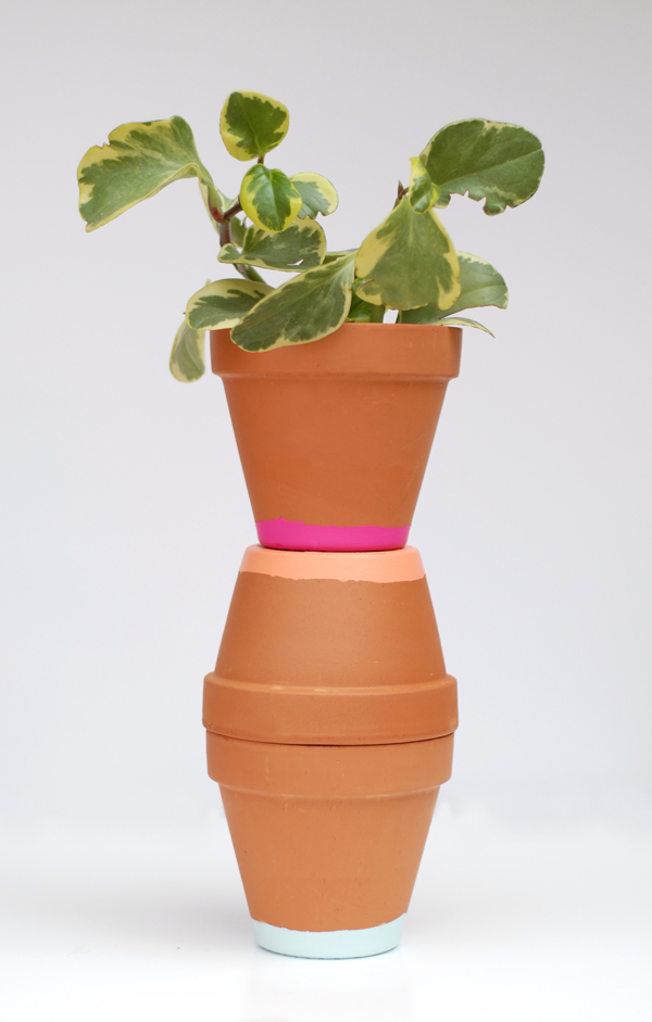 Painted Terracotta Planting Pots