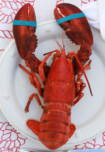 how to cook (and eat) a lobster