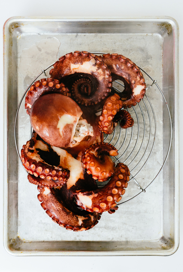 boiled-octopus