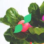 Balloon Fruit Gift Tree