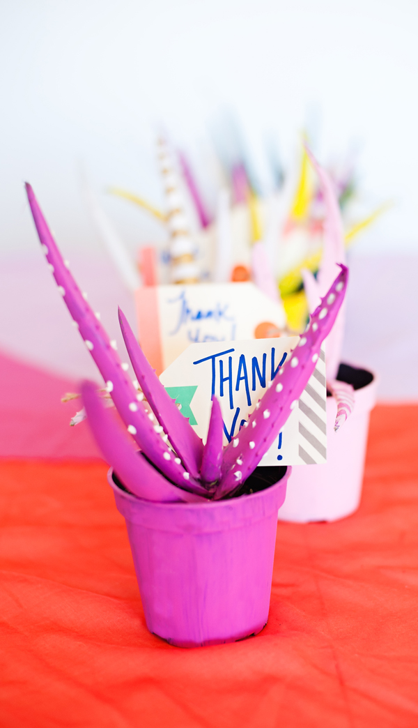 Painted plant party favors