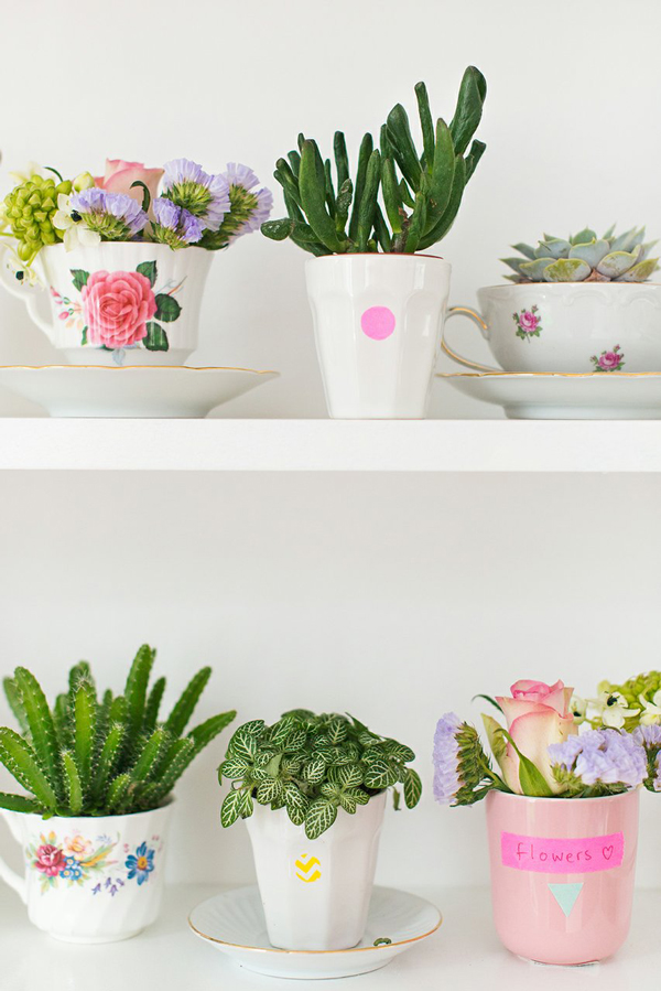 Cactus in cups (love this!)