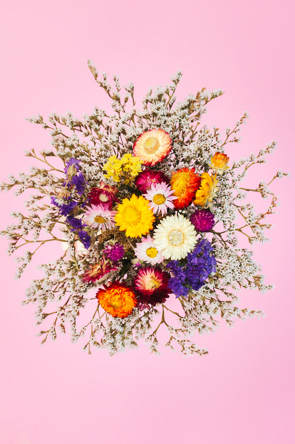 The Prettiest Dead Flower Projects A Subtle Revelry