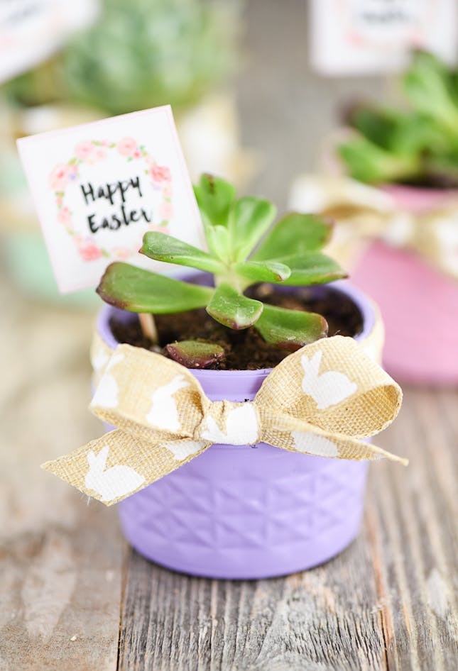 Planter easter basket