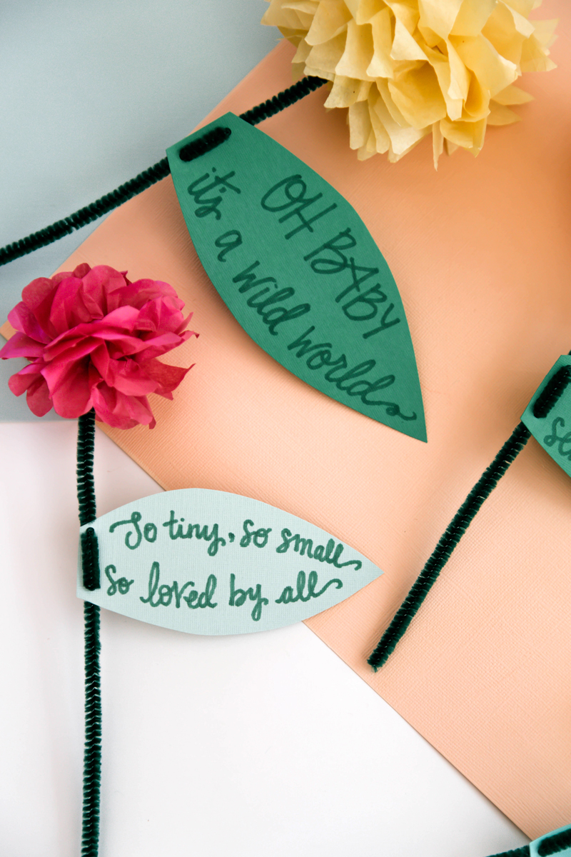 A list of funny baby shower quotes